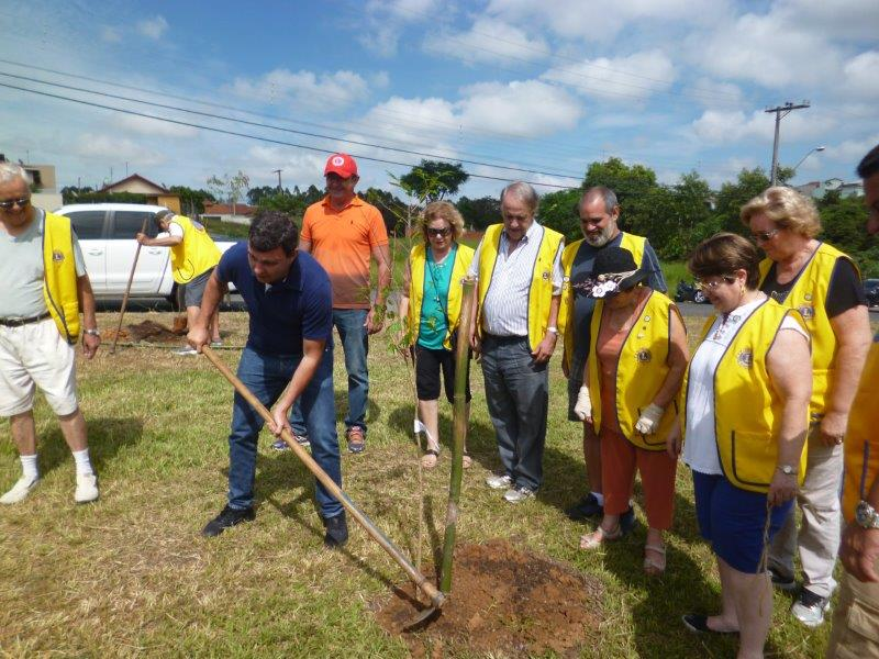 LC de Indaiatuva planta 60 árvores para reflorestamento